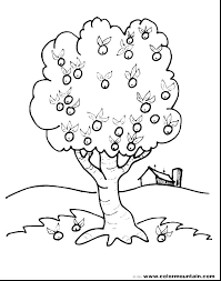 Fall Tree Coloring Pages To Print Trees Page For Kids Printable Fall