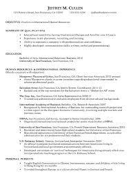 Sample Chronological Resume CV Template