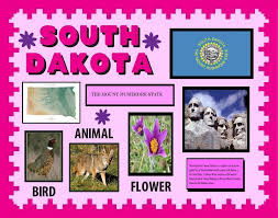 poster for school project make a poster about south dakota school project poster ideas