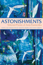 In A Marine Light Selected Poems Astonishments Selected Poems Of Anna Kamienska Anna