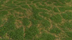 grass texture game. I Added Some Turbulence Shading To The Grass Increase Contrast And Give It More Texture. This Is Good Enough Put In A Game Already. Texture