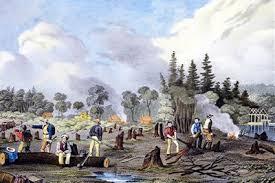 pioneer people 1800s. clearing the land pioneer people 1800s