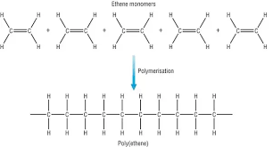 Whats The Difference Between A Monomer And A Polymer Quora