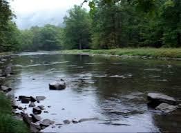 Loyalsock Creek Hatch Chart Fly Fishing On Penns Creek In Pennsylvania