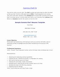 Template Chef Resume Template Fresh Sample Writing Guide