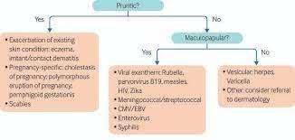 a suspected viral rash in pregnancy