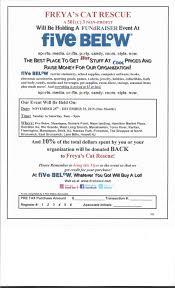 fundraisers freya s cat rescue 2015 fivebelow fundraiser flyer