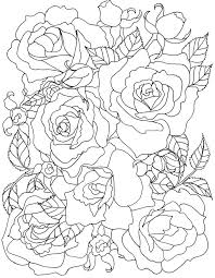 136 best roses to color images on colouring pictures of flowers