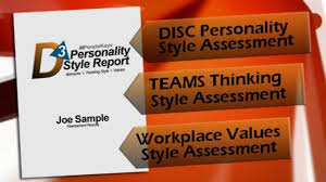 workplace values assessment the 3d report disc profile teams values report