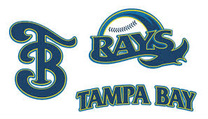 Image result for tampa rays logo