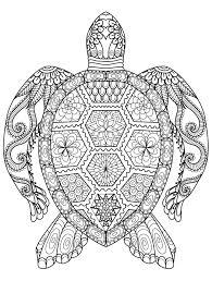 Sea Turtle Adult Coloring Pagr 20