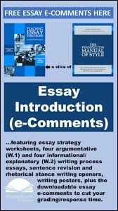 essay strategies pennington publishing blog  able essay comments