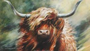 Highland Cow Art - Highland Cattle paintings and prints by Hilary Barker at  Mid Torrie Farm, Callander in Scotland.