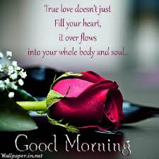 Good Morning My Love Quotes For Her Best of Short Good Morning Quotes For Her GoodMorningMyLoveQuotesIn