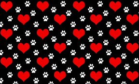 Paws N Little Hearts Background Little Dogs Big Hearts Rescue