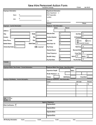New Hire Personnel Action Form Payroll Hr Compensation