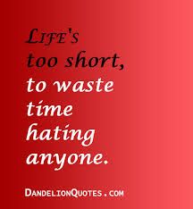 Life's Too Short Quotes New Life's Too Short To Waste Time Hating Anyone Life Quote