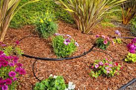 garden drip system. Contemporary Garden DIG Drip Kit In Garden Drip System