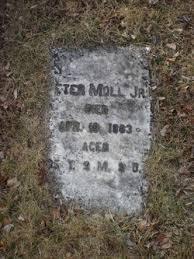Peter Moll Jr. (1847-1883) - Find A Grave Memorial