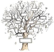 Drawing A Family Tree Template Pin By Debbie Desmond On Family History Blank Family Tree