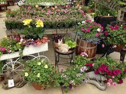 bachmans garden center. Garden Center Best Of Gallery Rogers Spring Hill Bachmans