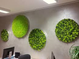 franzen moss wall design
