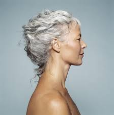 Short Grey Hair Style 30 stylish gray hair styles 4568 by wearticles.com