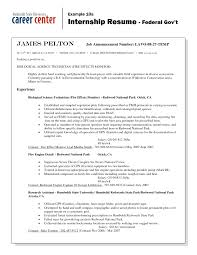 Sample Federal Government Resume Resume Government Resume Format 22