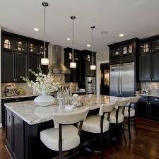 Kitchen Ideas Dark Cabinets Best Inspiration Design