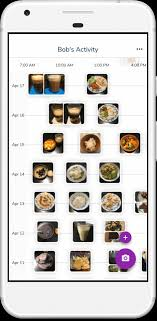 Meal Tracking Simple Meal Tracking App Free Food Diary Awesome