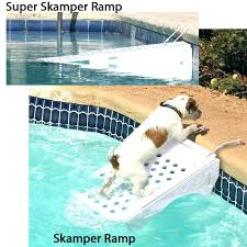 diy dog pool pool ramp for dog pool ramps for dogs ramp 2 pool dog ramp