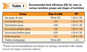 Cattle Feed Conversion Charts Calculating Feed Efficiency Progressive Dairy
