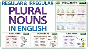 Singular And Plural Verbs Chart Plural Nouns In English Regular Irregular Plurals