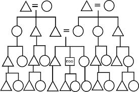 Kinship Chart Generator Online Eskimo Kinship Diagram
