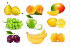 pictures of different fruit. Perfect Different Big Group Of Different Fruit  Food Objects In Pictures Of E