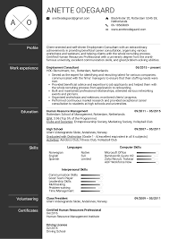 Sample Employment Resume Resume Examples By Real People Employment Consultant Resume