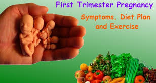 Pregnancy Diet Chart First Trimester First Trimester Pregnancy Symptoms Diet Plan And Exercise