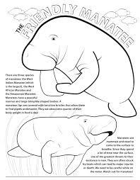 manatee coloring page 2.  Page Manatee Coloring Page In 2 E