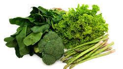 Leaf Vegetables In Bengaluru Latest Price Mandi Rates From