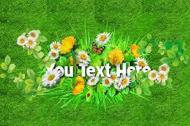 Kết quả hình ảnh cho hoa cỏ