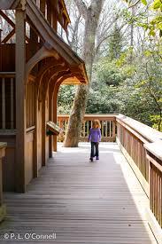heritage museum gardens treehouse