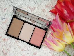 it costs 4 95 on makeup revolution slovenia and 3 50 on makeup revolution official site you get 11 grams of in the palette
