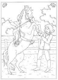 Inside Paarden Playmobil Manege Kleurplaat Kids Dejachthoorn