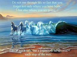 Quotes About Life Journey Friends Life Quotes New Quotes About Life Journey