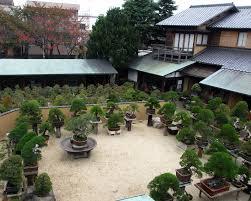 bonsai gardens. Shunkaen In Tokyo Bonsai Gardens