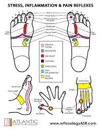 Foot Reflexes Special Points Stress Pain Inflammation