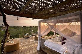 Tarangire Treetops  UPDATED 2017 Prices U0026 Lodge Reviews Treehouse Hotel Africa