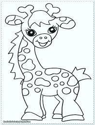 Rainforest Animals Coloring Pages Preschool Of Tropical Page Free