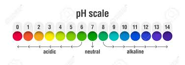 Ph Balance Chart Ph Value Scale Chart For Acid And Alkaline Solutions Acid Base
