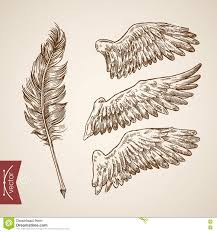 feather template angel bird wings feather template engraving retro vintage vector